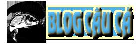 blog cau ca