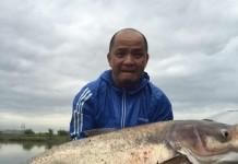 cách làm mồi câu cá mè