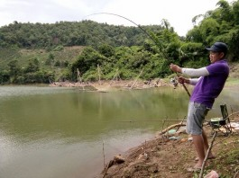 cách câu cá trôi