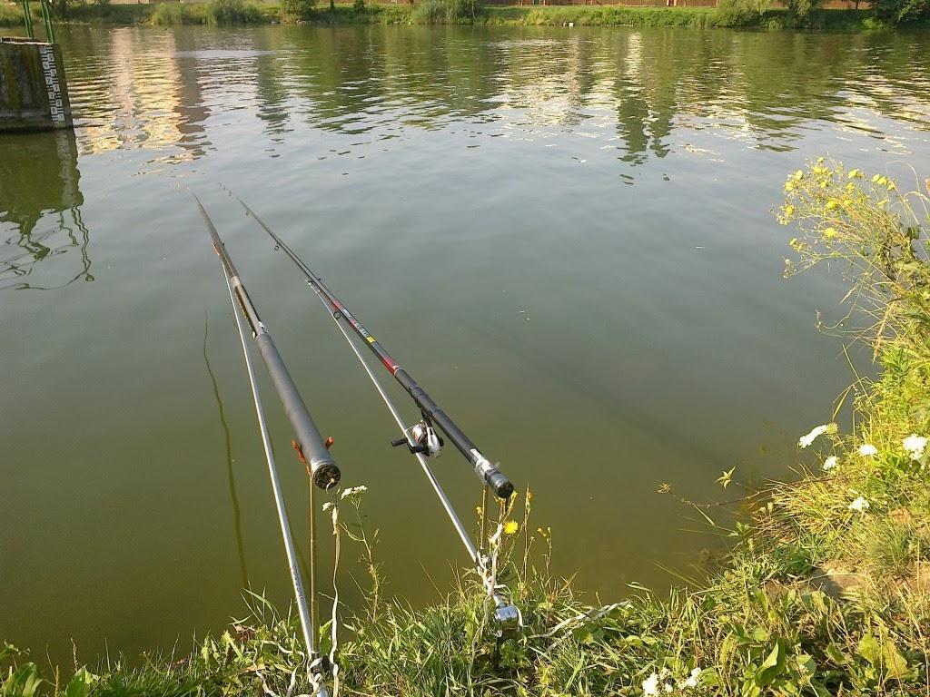 câu cá ở một khúc sông vắng vẻ