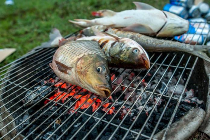 cá nướng giềng sả