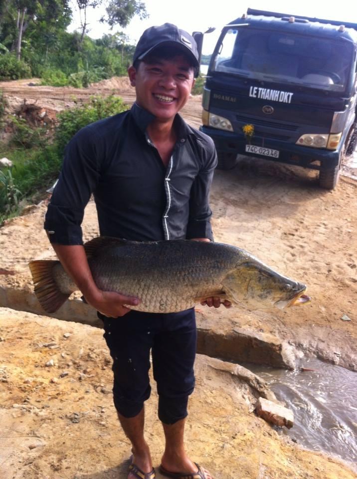 cách làm mồi câu cá vược (1)