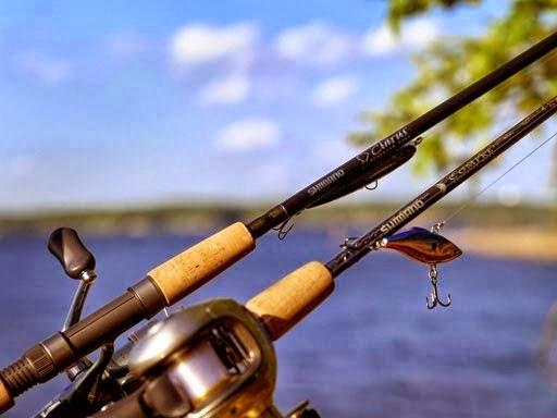 cần câu cá shimano